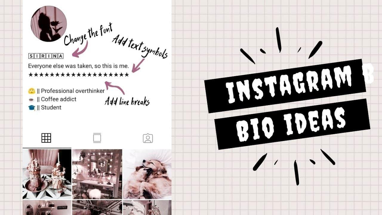 Bio-Instagram-Aesthetic-Tapi-Lucu-Bahasa-Indonesia