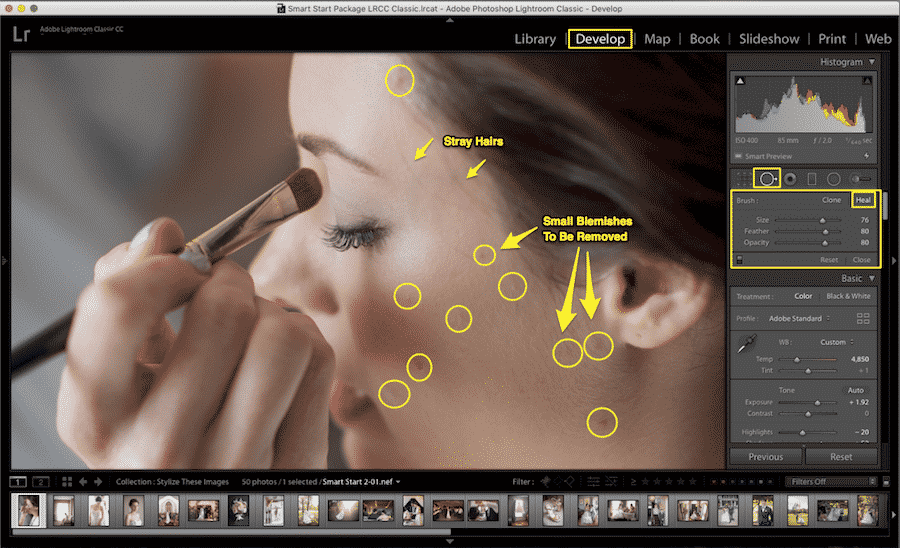 Spot-Removal-dan-Adjustment-Brush